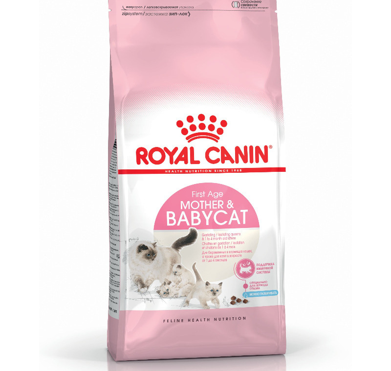 Royal Canin Baby Cat 34  2 Kg -